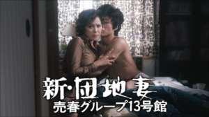 新・団地妻売春グループ13号館